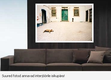 Toelised fotod laiendatud liikmega