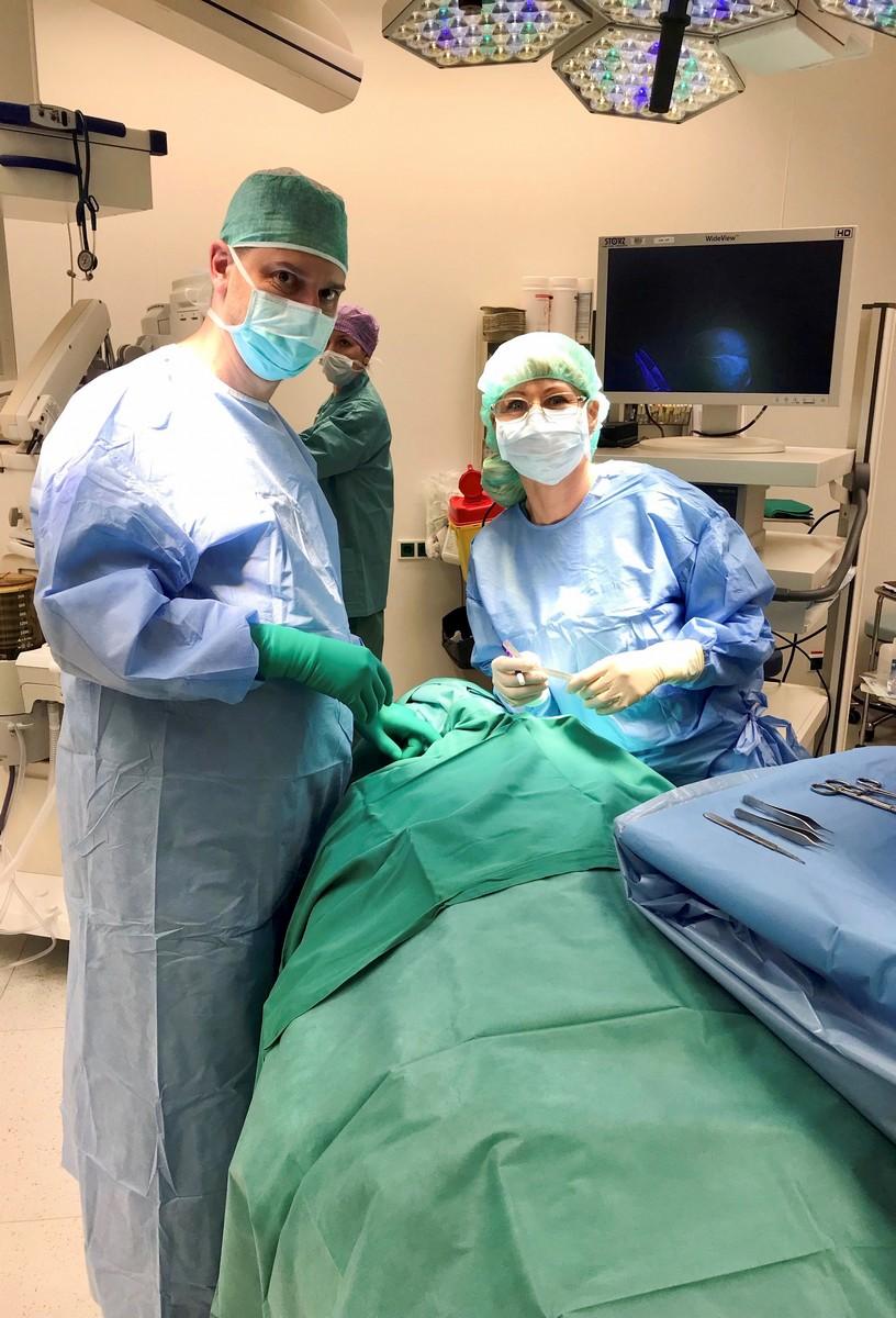 Mulle anti operatsioon liikme suurendamiseks Koerte suurused koer