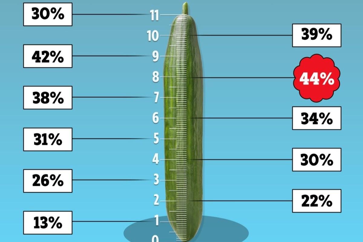 Semi-Dick Shape Size Foto